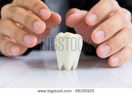 dental concept