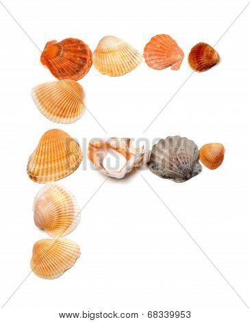 Letter F Composed Of Seashells