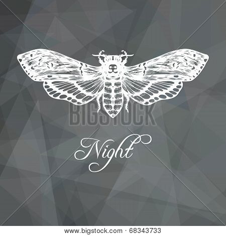 Abstract geometric gray background with butterfly