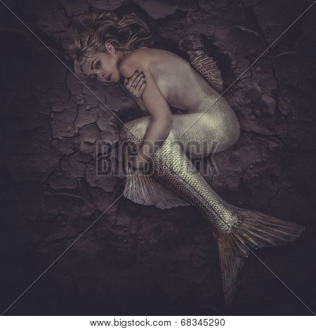 mermaid trapped in a sea of �?�¢??�?�¢??mud, concept fantasy fish woman with beautiful blond hair and her body scales