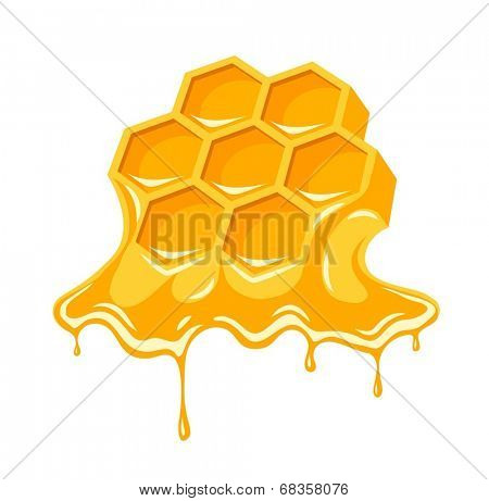 Honey flowing of bee honeycombs. Eps8 vector illustration. Isolated on white background