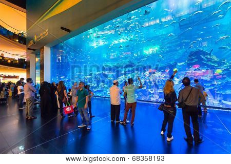 DUBAI, UAE - 1 APRIL 2014: People walking inside the Oceanarium tunnel iat Dubai Mall. It is the largest indoor aquarium in the world at with 50 meters long and 10 million litres of water.