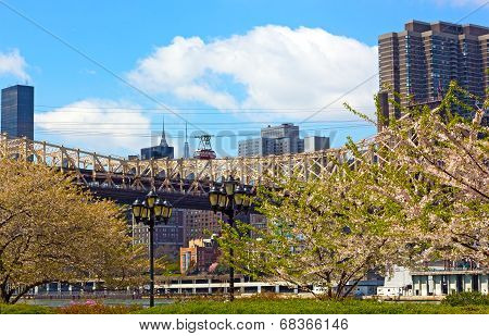 Roosevelt Island Tramway and Queensboro Bridge in blooming season.