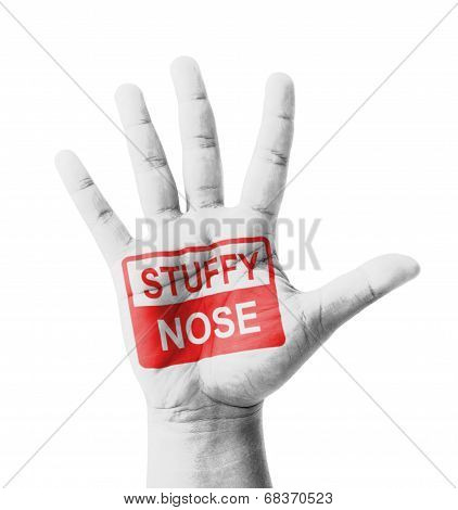 Open Hand Raised, Stuffy Nose (nasal Congestion) Sign Painted, Multi Purpose Concept - Isolated On W