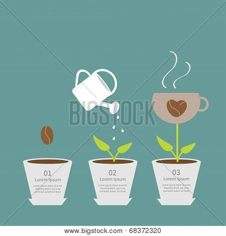 Coffee seed, watering can, cup plant in pot. Growth concept. Three steps. Flat design infographic.