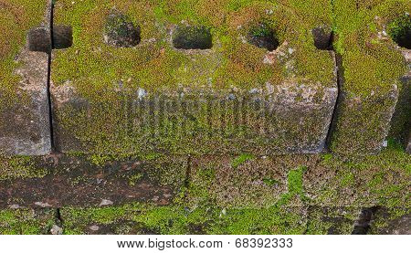 Old Brick Background With Moss Captured.