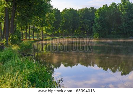 Sunny Morning In A Summer Forest And Beautiful Lake