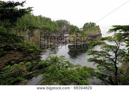 Coastal Cliffs in Washington State