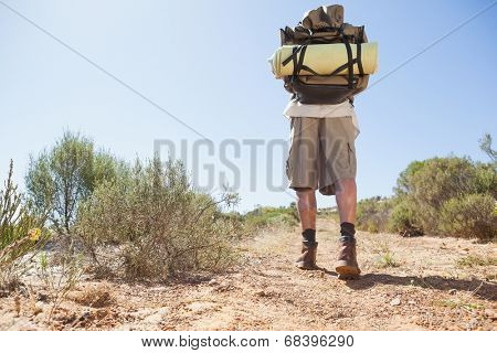 Handsome hiker walking in the countryside on a sunny day