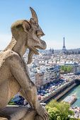 image of gargoyles  - Gargoyle Stryge and demon at Notre Dame of Paris overlooking the skyline at a summer day  - JPG