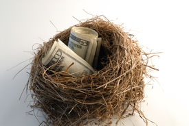 picture of nest-egg  - Photo of two rolled eggs of money in a birds nest - JPG