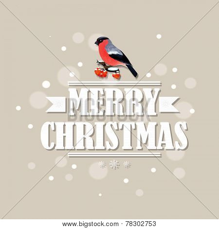Vintage Christmas Card With Bullfinch With Gradient Mesh, Vector Illustration