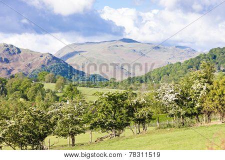 landscape of Lake District near Ullswater, Cumbria, England