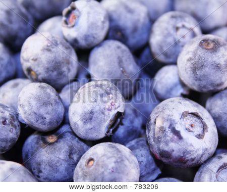 Blueberries (Macro)