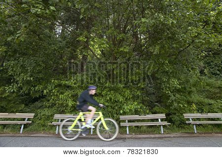 Cyclist In Stanley Park. Vancouver. Canada