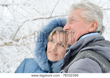 Portrait Of Elderly Couple