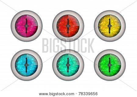 Color Dragon Eyeballs