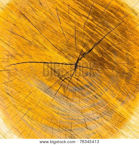 Abstract brown wooden background, building material