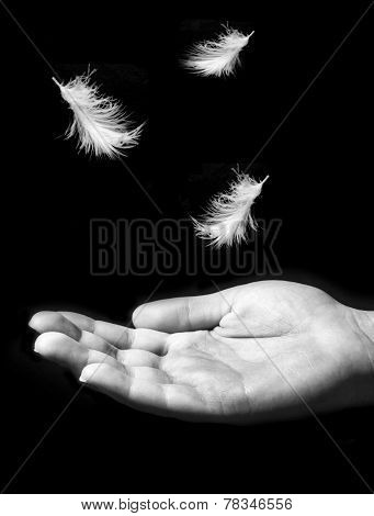 Forgiveness concept, birds fly away from hand