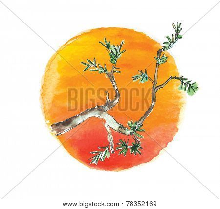 Branch of juniper tree against the sun, watercolor vector illustration