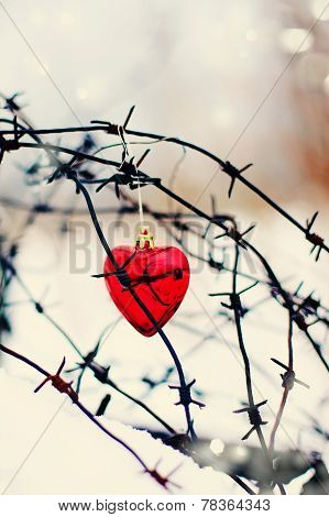 Red Heart And Barbed Wire.