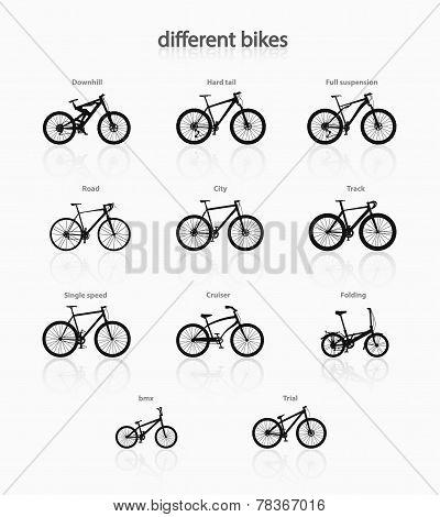 Different bikes.