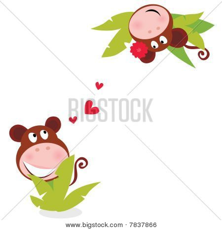 Monkey male and female in love looking each at other behind palm leaves