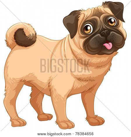 Flashcard of a dog standing alone