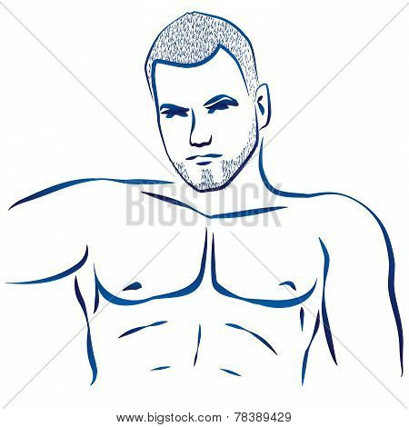 Muscular Hunk Torso