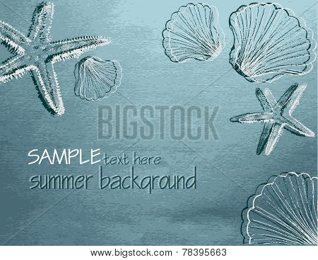 Summer Background With Shells