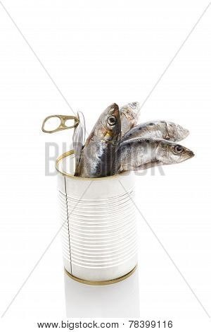 Fresh Fish In Can Isolated On White Background.