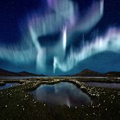 image of marsh grass  - The Northern Light over the marsh landscape with wildflowers in Landmannarlaugar Iceland - JPG