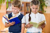 stock photo of diligent  - Portrait of two diligent pupil with books in library - JPG