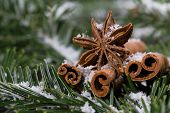 foto of christmas spices  - Christmas spices cinnamon and star anise on the background christmas tree twigs - JPG