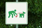 picture of dog poop  - A sign informs about the rules of dog walking - JPG