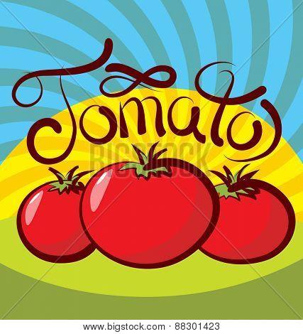 vector tomato with calligraphic inscription