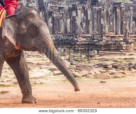 elephant ride on angkor background, bayon temple view