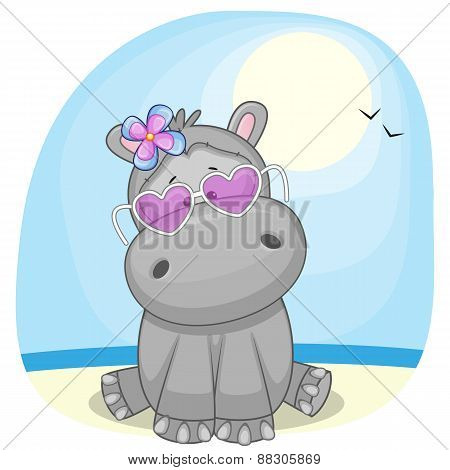Hippo On The Beach