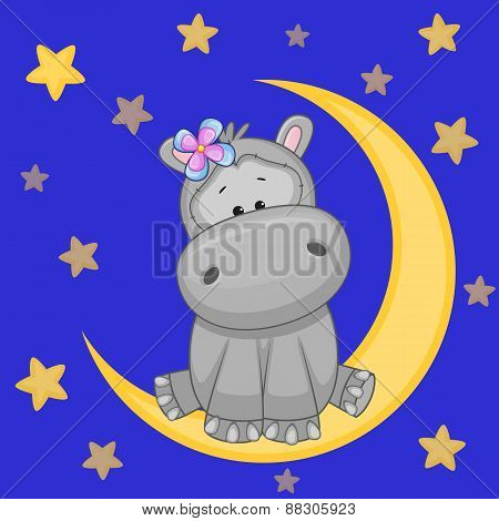 Cute Hippo On The Moon