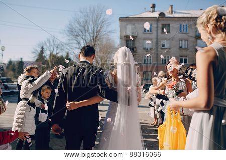 Throw Away The Petals On Brides