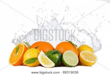 Fresh limes, lemons and oranges with water splashes isolated on white background