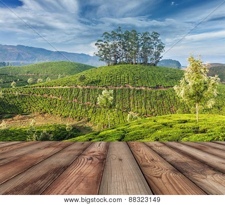 Wood planks floor with  green tea plantations in background. Munnar, Kerala, India