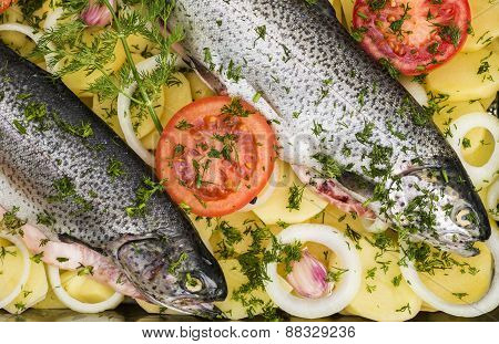 Cooking trouts