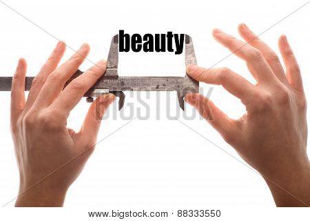 Small Beauty