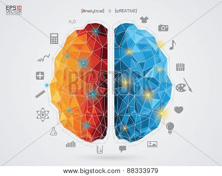 vector illustration of a brain on background