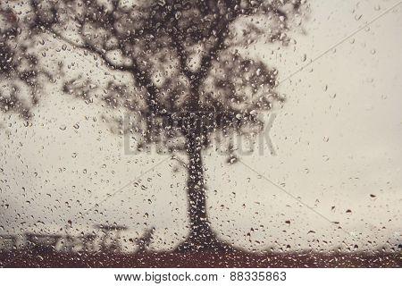 Heavy Rain - View Through The Window,soft Focus