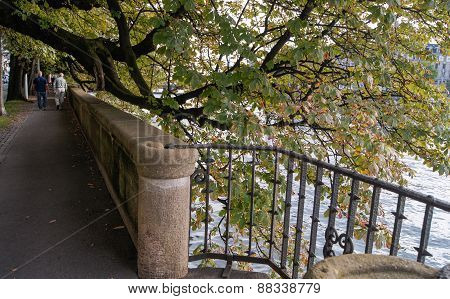 stone railing under the trees