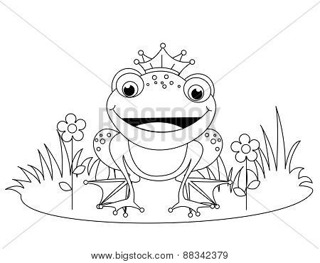 Frog Coloring Book Graphic
