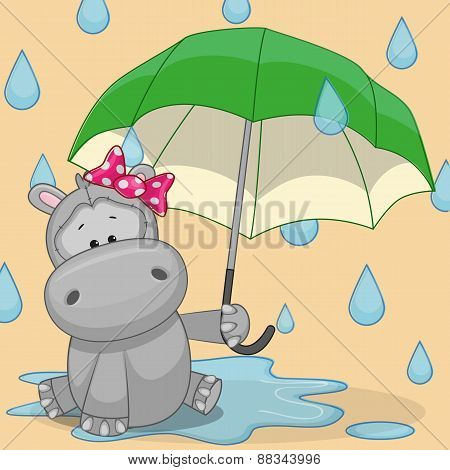 Hippo With Umbrella