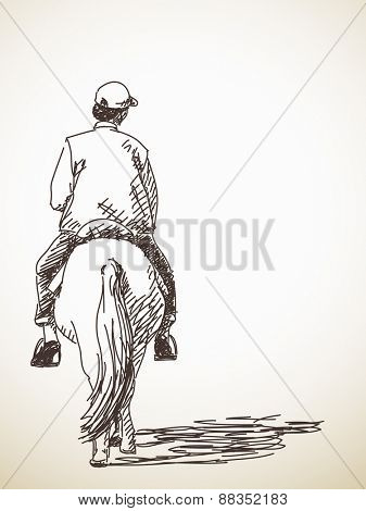 Sketch of man riding a horse back view Hand drawn vector illustration